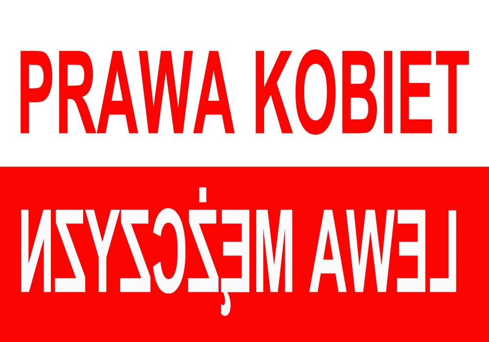 Jarocki Pawel