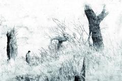 Kopiec Adam - bez tytulu, 2011, 100 x 70 cm_resize_resize